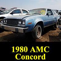 Junkyard 1980 AMC Concord