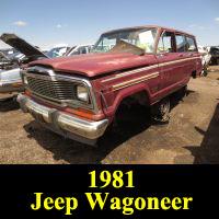 Junkyard 1981 Jeep Wagoneer