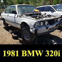 Junkyard 1981 BMW 320i