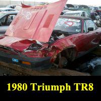 Junkyard 1980 Triumph TR8