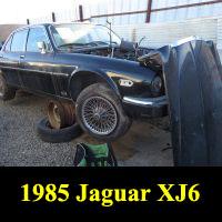 Junkyard 1985 Jaguar XJ6