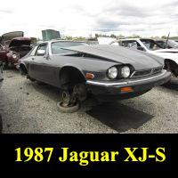 Junkyard 1987 Jaguar XJ-S