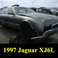 Junkyard 1997 Jaguar XJ6 L