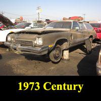 Junkyard 1972 Buick Century Luxus Wagon