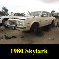 Junkyard 1980 Buick Skylark