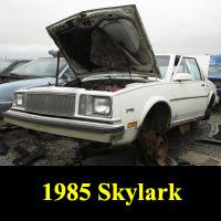 Junkyard 1985 Buick Skylark
