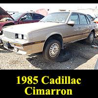 Junkyard 1985 Cadillac Cimarron
