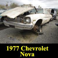 Junkyard 1977 Chevrolet Nova