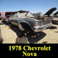 Junkyard 1978 Chevrolet Nova