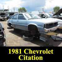 Junkyard 1981 Chevrolet Citation