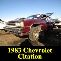 Junkyard 1983 Chevrolet Citation