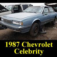 Junkyard 1987 Chevy Celebrity