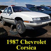 Junkyard 1987 Chevy Corsica sedan