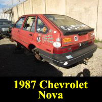 Junkyard 1987 Chevrolet Nova
