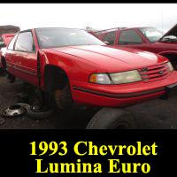 Junkyard 1993 Chevrolet Lumina Euro