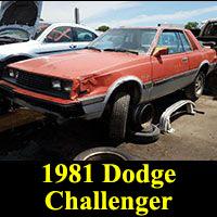 Junkyard 1981 Dodge Challenger
