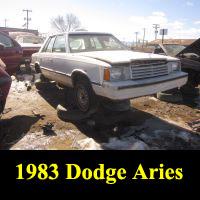 Junkyard 1983 Dodge Aries sedan