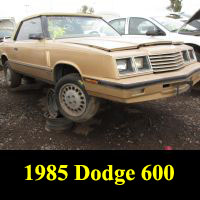 Junkyard 1985 Dodge 600 ES