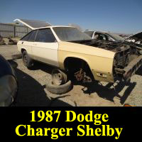 Junkyard 1987 Dodge Shelby Charger