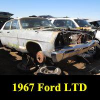 Junkyard 1967 Ford LTD