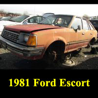 Junkyard 1981 Ford Escort