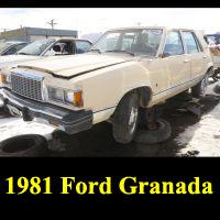Junkyard 1981 Ford Granada L