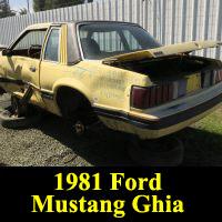 Junkyard 1981 Ford Mustang Ghia
