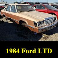 Junkyard 1984 Ford LTD