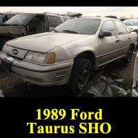 Junkyard 1989 Ford Taurus SHO