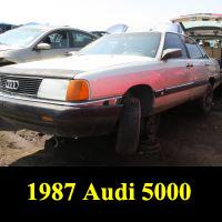 Junkyard 1987 Audi 5000