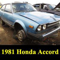 Junkyard 1981 Honda Accord LX
