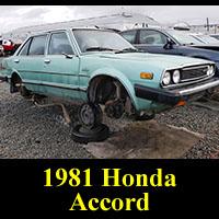 Junkyard 1981 Honda Accord Sedan