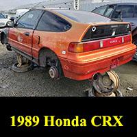 Junkyard 1989 Honda CRX