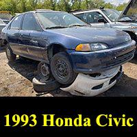 Junkyard 1993 Honda Civic sedan