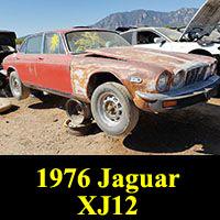 Junkyard 1976 Jaguar XJ12