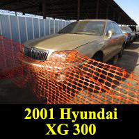 Junkyard 2001 Hyundai XG300