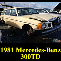 Junkyard 1981 Mercedes-Benz 300TD