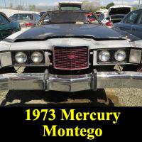 Junkyard 1973 Mercury Montego MX Brougham