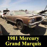 Junkyard 1981 Mercury Grand Marquis