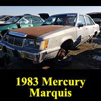 Junkyard 1983 Mercury Marquis