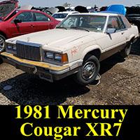 Junkyard 1981 Mercury Cougar XR7