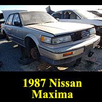 Junkyard 1987 Nissan Maxima