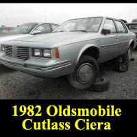 Junkyard 1982 Oldsmobile Cutlass Ciera