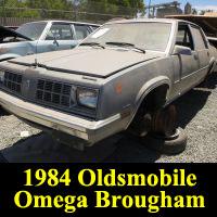 Junkyard 1984 Oldsmobile Omega Brougham