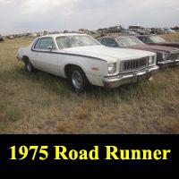 Junkyard 1975 Plymouth Road Runner