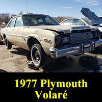 Junkyard 1977 Pymouth Volare