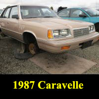 Junkyard 1987 Plymouth Caravelle