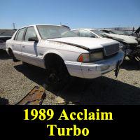 Junkyard 1989 Plymouth Acclaim