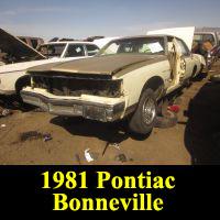 Junkyard 1981 Pontiac Bonneville Brougham