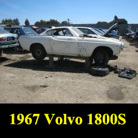Junkyard 1967 Volvo 1800S